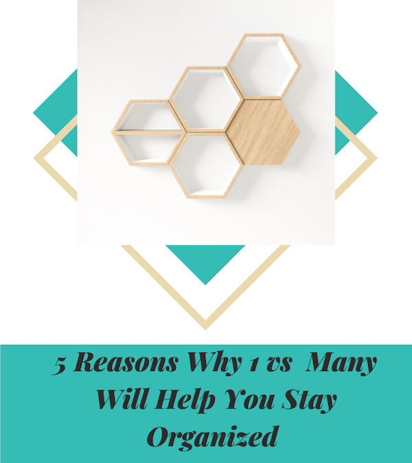 5 Reasons Why 1 vs Many Will Help You Stay Organized